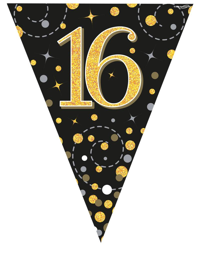 16th Sparkling Fizz Black & Gold Holographic Party Bunting 11 flags 3.9m
