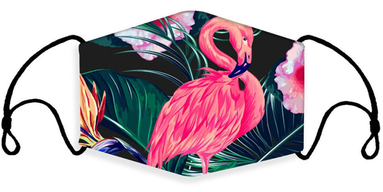Animal Flamingo Print Face Mask With Filter Pocket