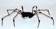 Fur Spider