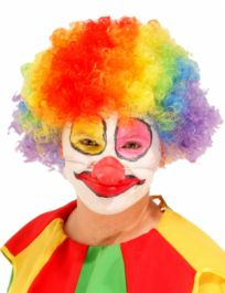 Clown/Afro Wig