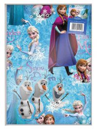 Disney Frozen Gift Pack
