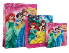 Disney Princess Eday Bag (Large)