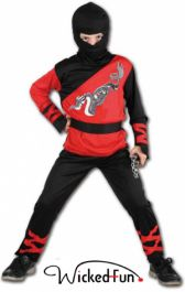 Dragon Ninja Master Costume