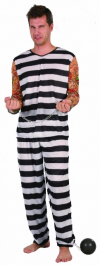 Jail Bird Costume