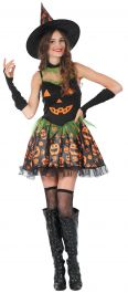 Adult Witch Girl Costume