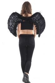 Black Feather Wings Medium(Folding)