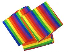 Children Rainbow Bandana (1 Dozen)
