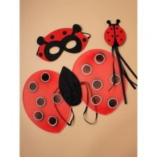 Children's Ladybird Dressing up set.