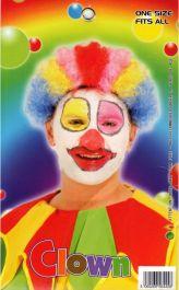 Clown Wig