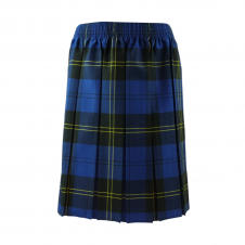 Dark Blue Tartan Box Pleated Skirt