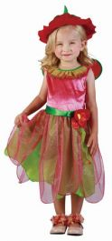 Fairy Strawberry Toddler Costume