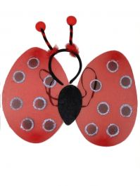 LadyBird Set of Wings and Deeley Boppers