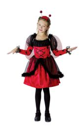 Ladybird Children Costume
