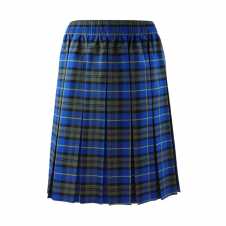 Light Blue Tartan Box Pleated Skirt