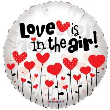 Love is in the air Clear View Balloon (18inch)