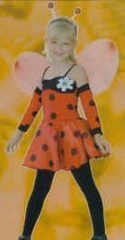 Mini Ladybug Costume
