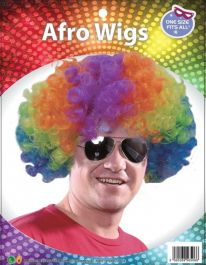 Multi Colour Afro Wig
