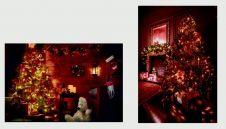 Premier Fibre Optic Christmas Tree Canvas - 60 x 40 Assorted Designs Available