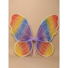 Small Rainbow Coloured Fairy Wings
