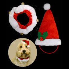 Santa Hat and Collar Set
