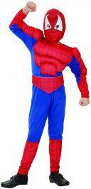 Spider Hero Children Costume
