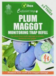 Vitax Plum Maggot Trap - 35g Refill Pack