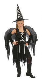 Winged Witch Costume