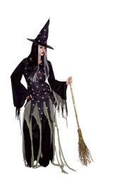 Witch In The Woods Adult Costume