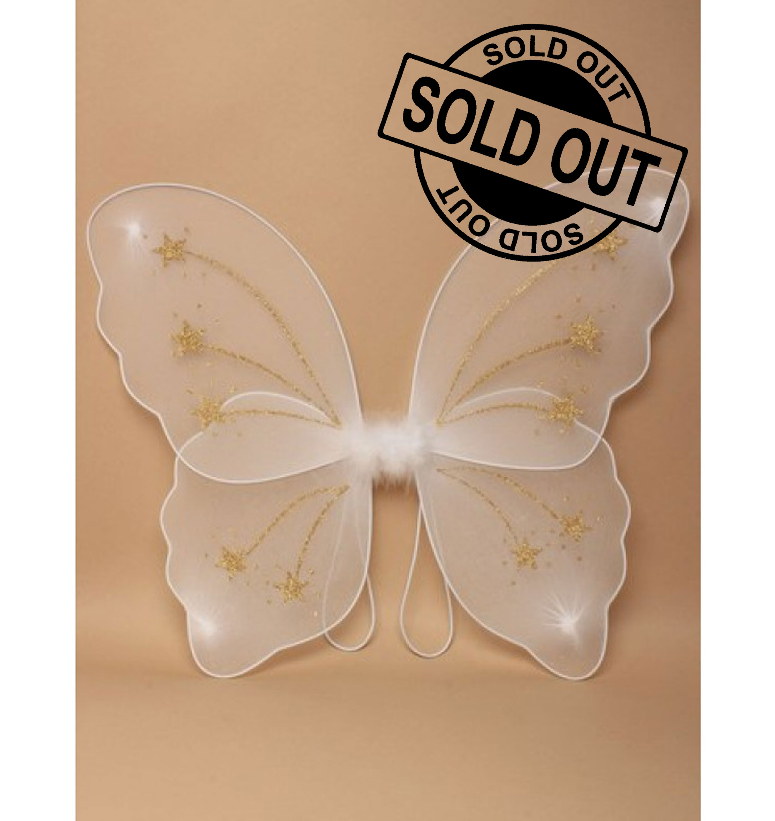 White Net Fairy Wings With Gold Glitter Star